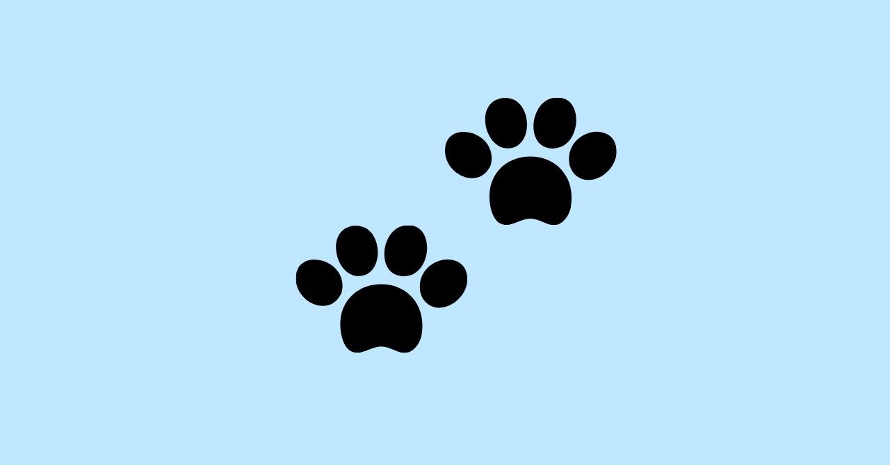 東村芽衣の口癖「私は猫です」について